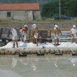 Sea salt harvest in Ston