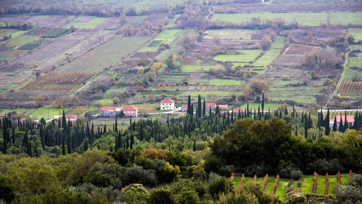 Photo of Experience Pelješac and Konavle
