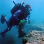 Seabed Clean-up for Koločep Island