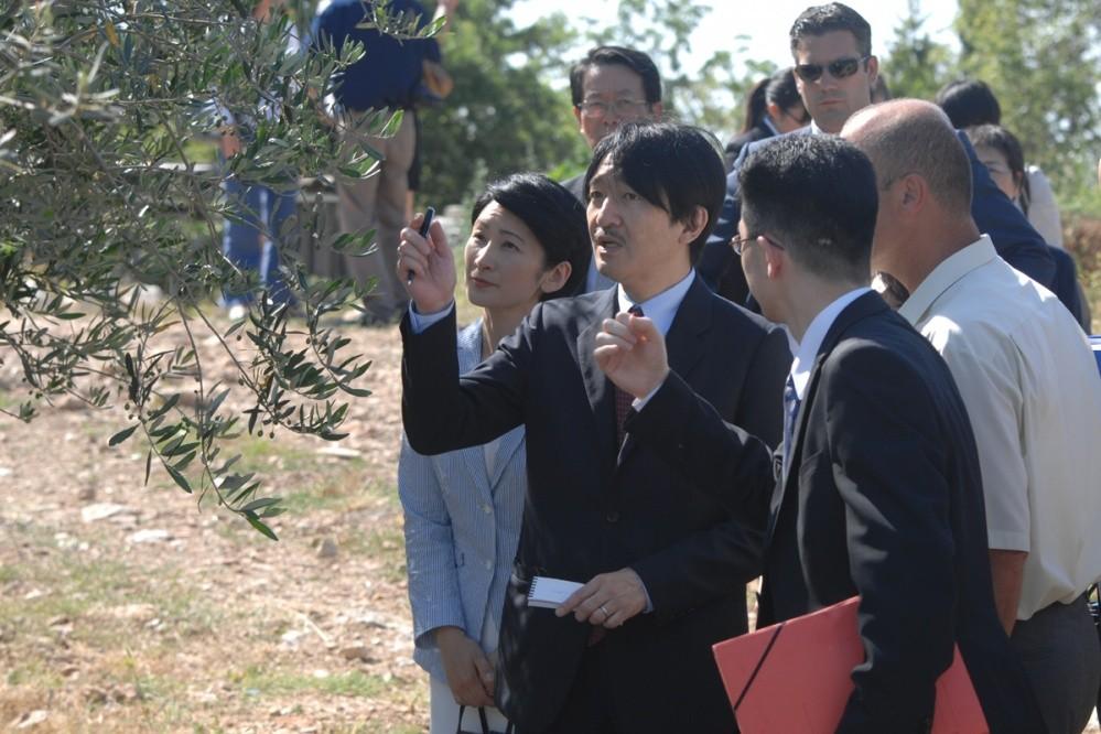 Photo of Japanese Prince Akishino thrilled with olives from Konavle