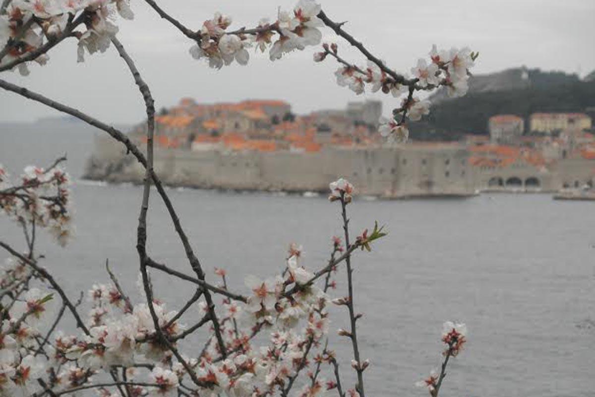 Dubrovnik in top ten spring destinations