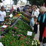 Flower Fair Dubrovnik