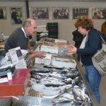 Dubrovnik Fish Market