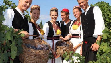 "Photo of ""Trganje"" Manifestation Officially Opens the Grape Harvesting Season in Konavle"