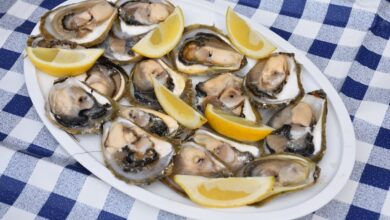 Photo of GREAT NEWS! The 'Mali Ston oyster' receives the European protected designation of origin